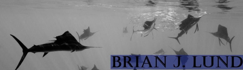 Brian J. Lund